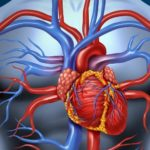 Lower Risk Of Heart Disease – Flax Seed Benefits – Home Remedies
