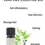 Camphor Oil – Health Benefits Uses