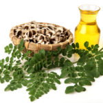 Moringa Essential Oil – Health Benefits